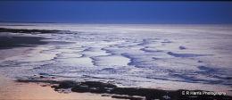 Seahouses Northumberland Coast
