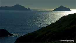 Port  Quinn