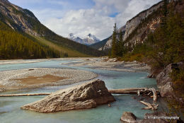 Bow River BC