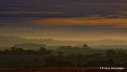 View south - Whittenham Clumps