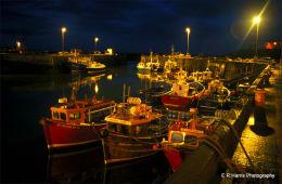 Seahouse,s harbour 1