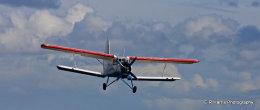 Antonov An2-colt