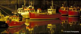 Seahouse,s harbour 3