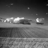 Harvest Clouds