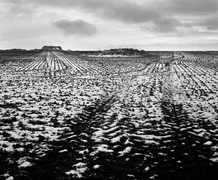 Irton Moor