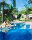Original  Private Pool, Spain   SOLD