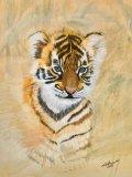 SOLD  Originl First Exploration - Tiger Cub