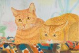 Marmalade & Ginger Cats