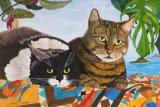 Original Boris & Tiger Cats