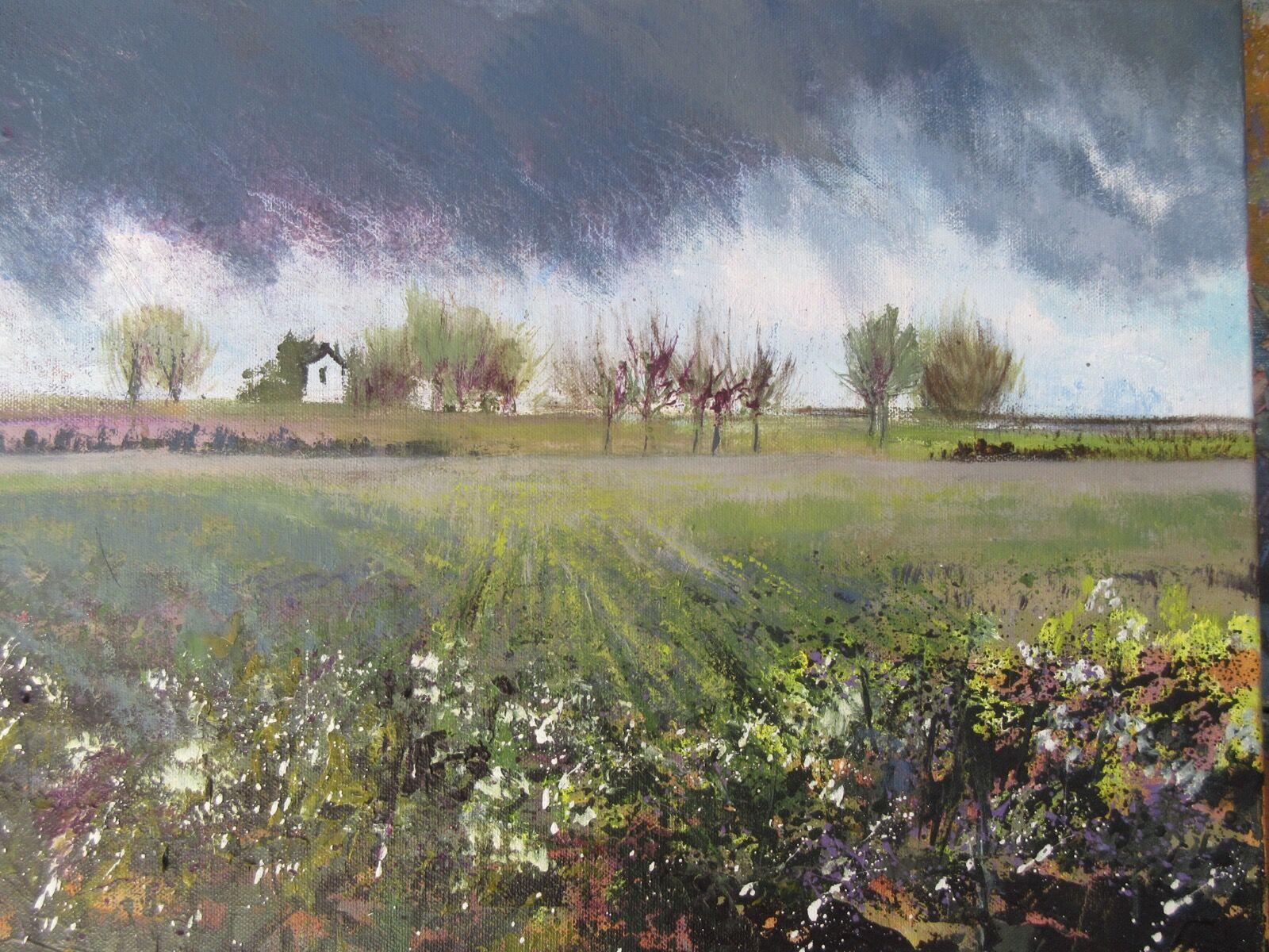 rain fields storm