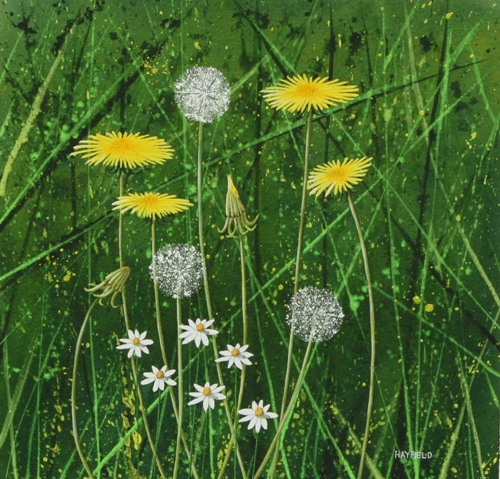 Dandelions and Daisies 25cm x 25cm (Sold)