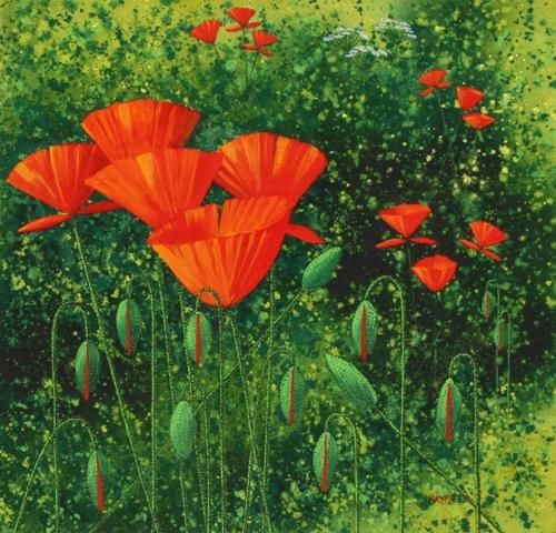 Poppies 25cm x 25cm
