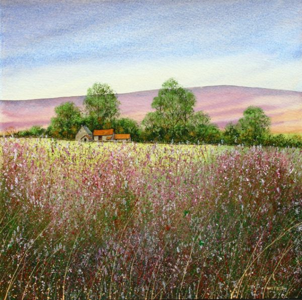 Farmstead on the North York Moors
