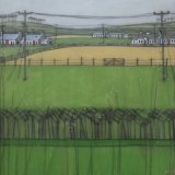 Galloway Summer - £400