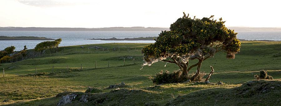 Islands of Fleet, Dumfries and Galloway