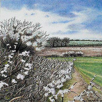 blackthorn spring
