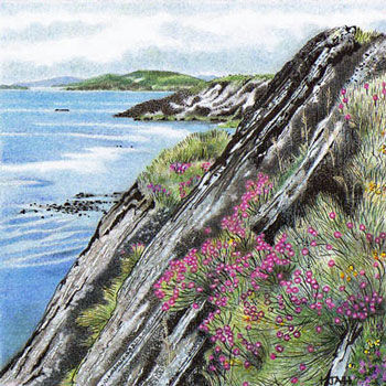 ink and coloured pencil landscapes
