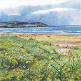 machair at machrihanish