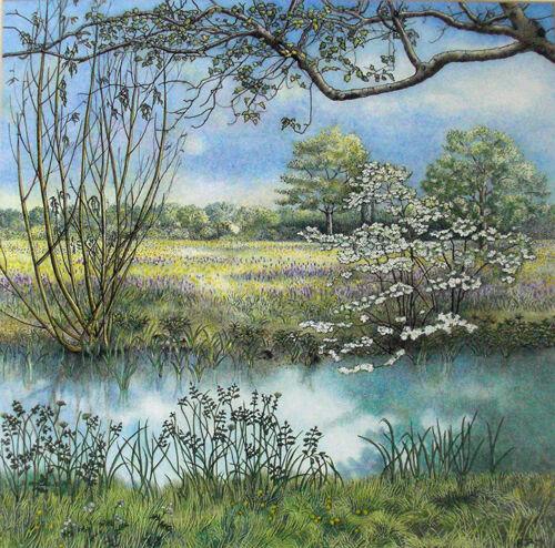 marden meadow pond