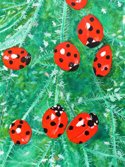 ladybirds and aphids on a leaf by robin hook
