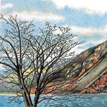 tree by wastwater