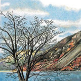 tree by wastwater (sold)