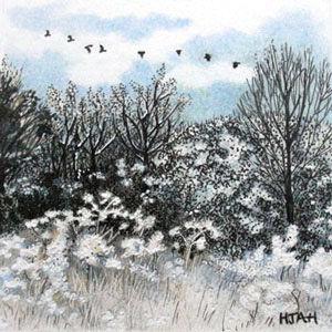 winter flight path