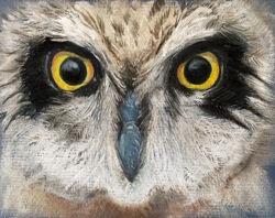 owl eyes by rachael wood