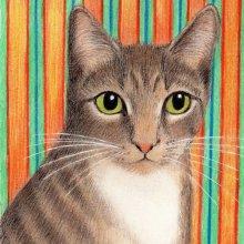 SIMON KITTY CAT - SOLD