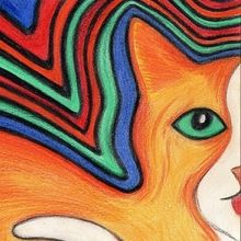 'PSYCHEDELIC KITTY CAT SUSIE'