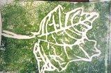 Leaf Print Y2