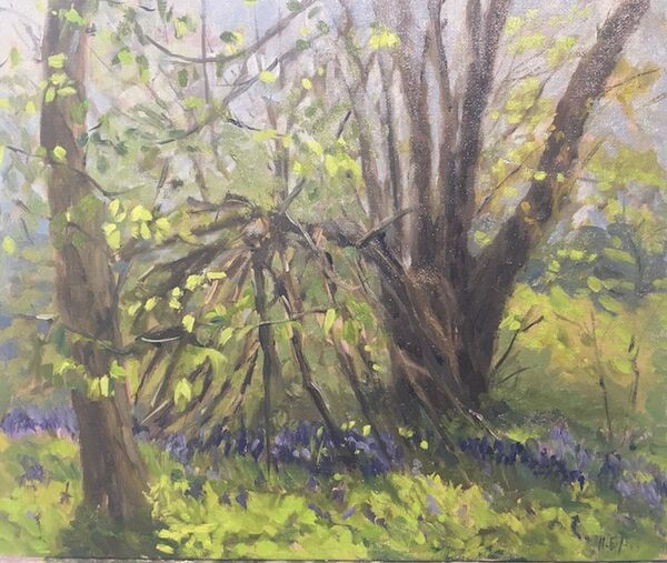 A Den in the Bluebells Woods