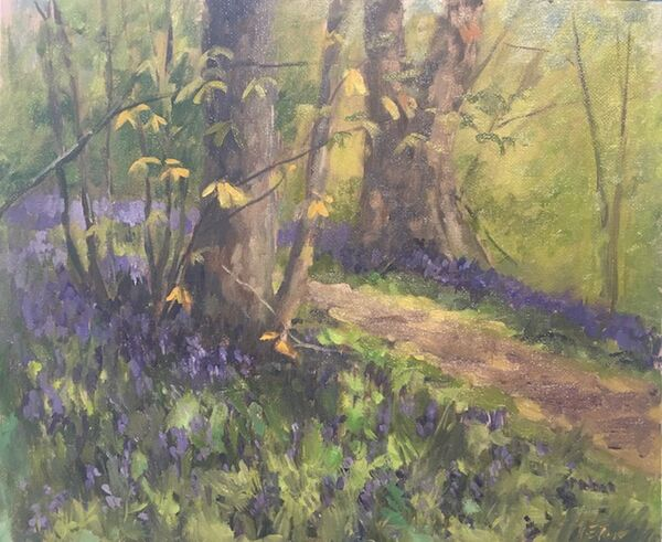 A Path Through the Bluebells