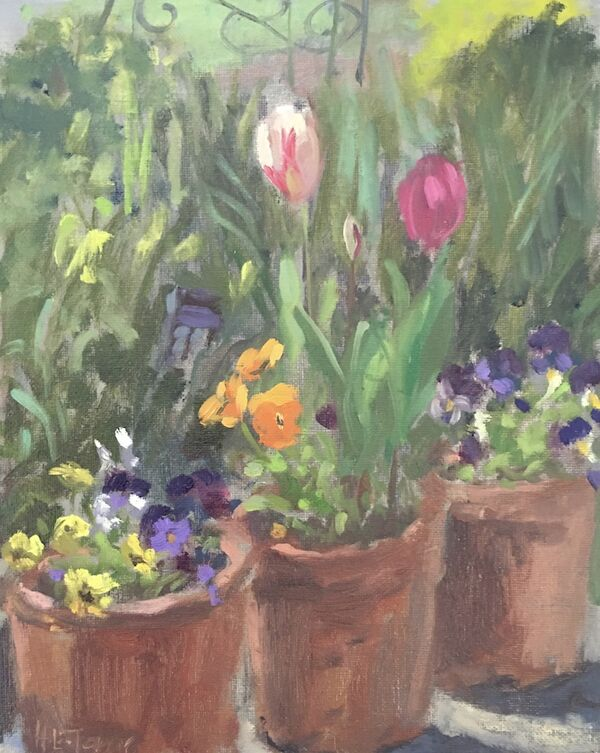 Tulips and Pansies in the Garden