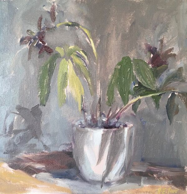 Lenten Roses with Shadows