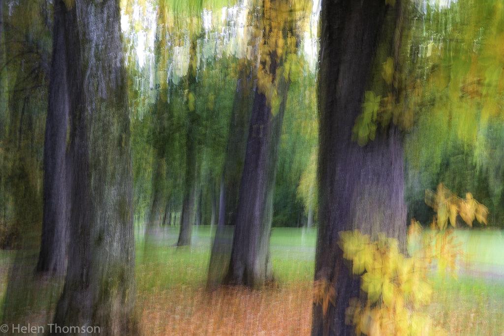 01724 'Autumnal Cheer'