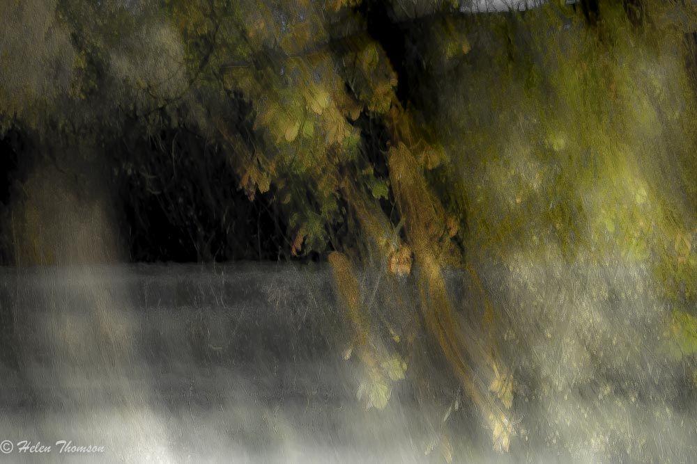 05451 'Autumnal Storm'