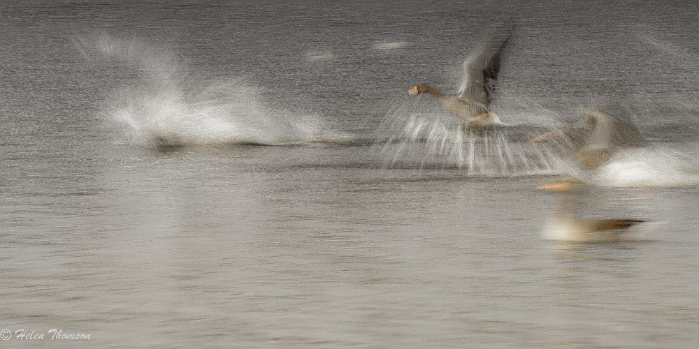 09737 'Takeoff'