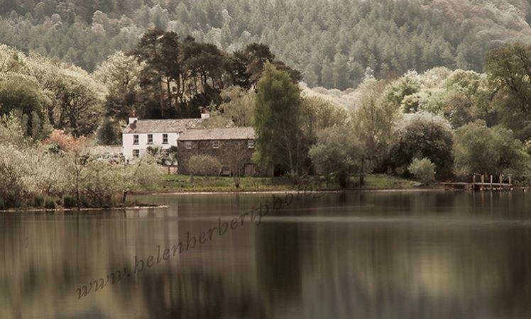 Farm by the Lake
