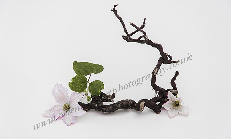 Flower with Twisted Wood