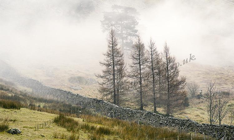 Mist Rolling Down Fell