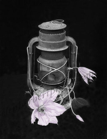 Oil Lamp with Flower