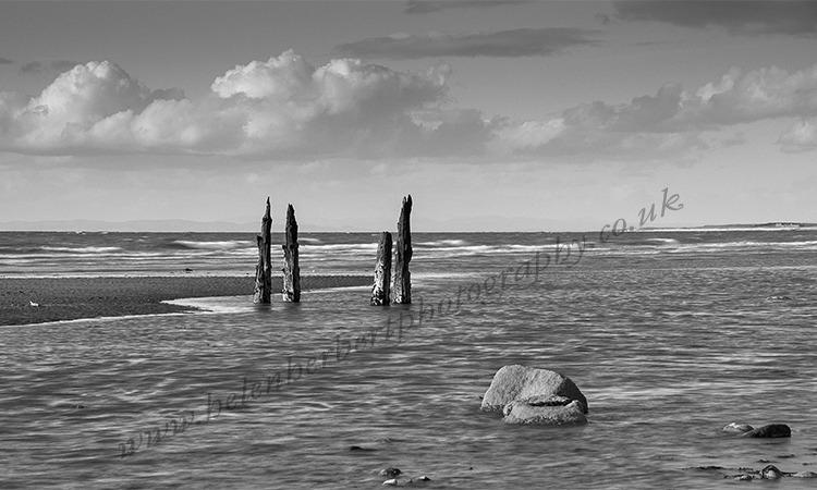 Rippling Tide