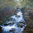 'Woodland Stream'