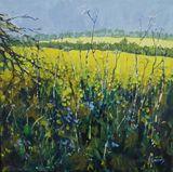 Spring Fields 3