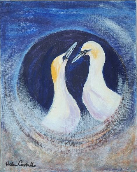 455_Gannets_Greeting_spiral_10x8in_Acrylic