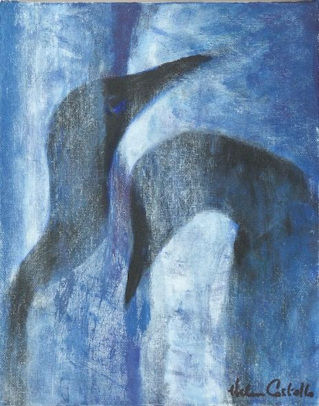 460_Guillemots_pair_10x8in_Acrylic