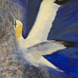 SOLD_469_Gannet_Skypointing_30x24in_Acrylic