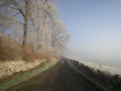 Mist on the Hilltop Road