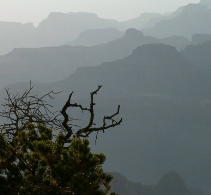 5.  Dusk in the Canyon